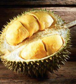 Durian Lagenda @Lot 10 Hutong