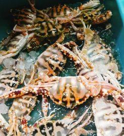 Han Lim SeaFood Restaurant Cheras